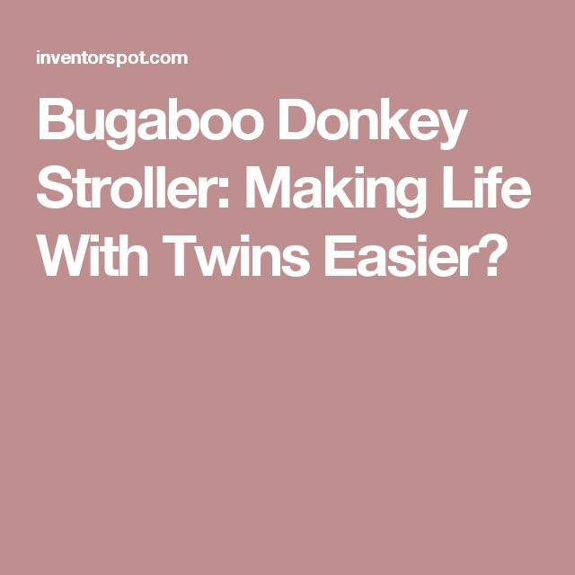 Bugaboo Donkey Stroller: Making Life With Twins Easier?