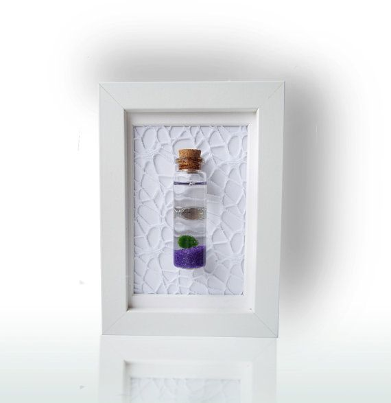 The greatest combination of elegance, happiness and peacefulness in our shop! A cheerful Marimo Moss Ball in a clear glass mini bottle mounted on a picture frame. #marimomoss #moss #etsyshop #shopping #shop #plant #plants #homedecor #decoration #love #beautiful #unique #terrarium #gift #idea #interiordesign #waterplant #green #wohnenidee #idea #tabledcoration #plant #plants #planter #terrarium #aquarium #livemoss #marimo #blue #nanomoss #pflanze #wallart #nano