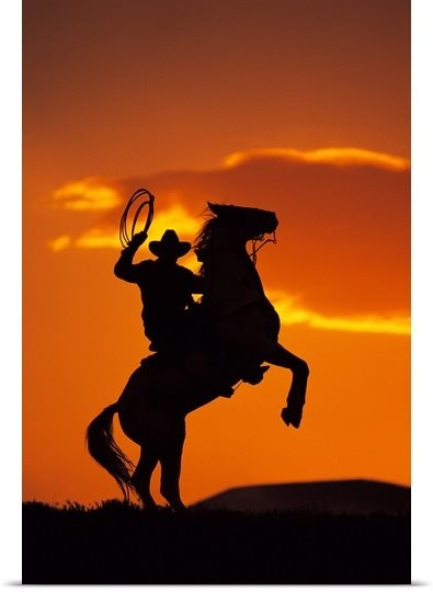 Silhouette of cowboy on horse rearing up                                                                                                                                                                                 More