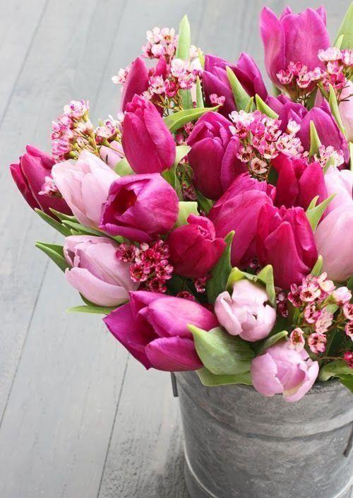 light & dark pink tulips || flower arrangement in galvanized bucket