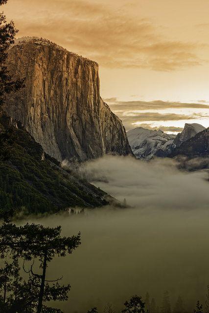 ~~Sunrise on El Capitan ~ a foggy morning, Yosemite National Park, California / USA by Brent Clark~~