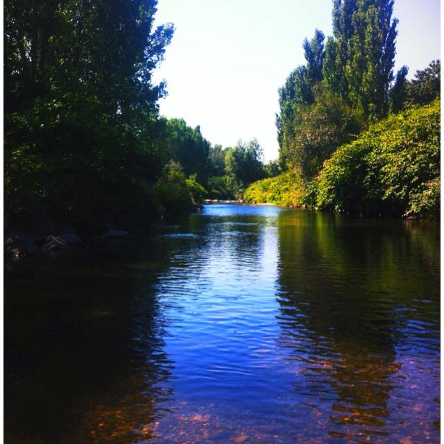 Flusswandern, Schwechat@Traiskirchen