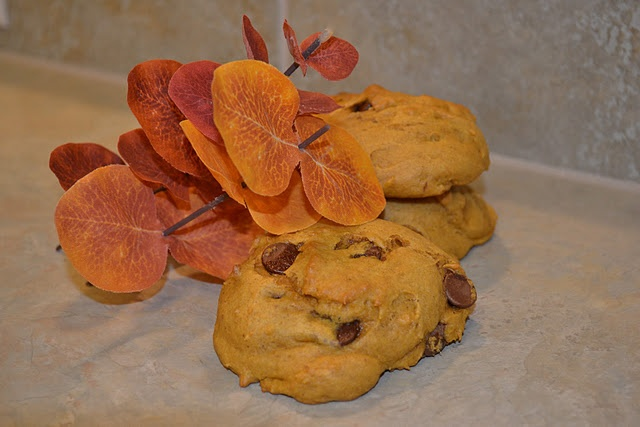 spiced pumpkin chocolate chip cookies