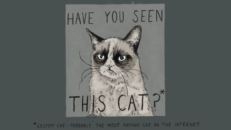 Illustration for today's show done by the wonderfully talentedSeonaid MacKay. But let's face it interwebs, Grumpy Cat would never be lost, she'd just be ignoring people.