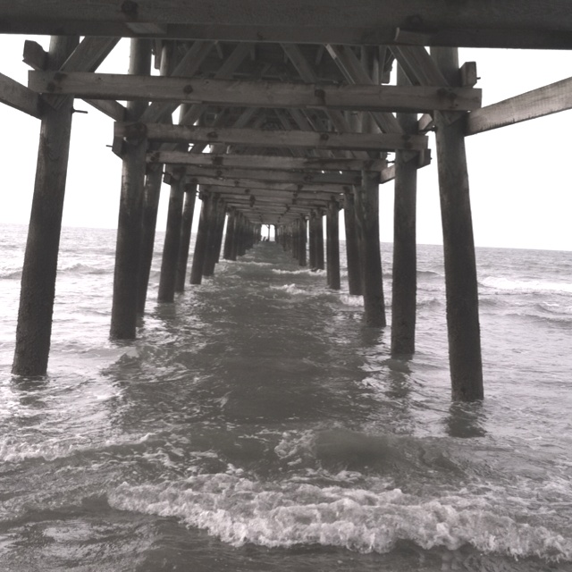 17 best images about myrtle beach piers on pinterest for Cherry grove pier fishing report