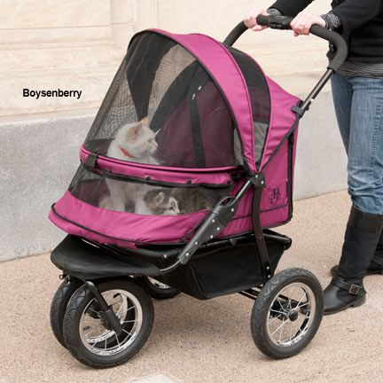 Cat Carriers, Cat Strollers, Cat Travel Products – Drs. Foster & Smith