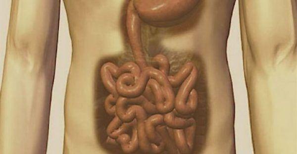Σύμφωνα με τον Ιπποκράτη όλες οι ασθένειες προέρχονται από το έντερο. Δείτε πως να το καθαρίσετε!