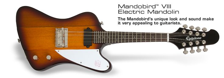 Epiphone Mandobird VIII - 8 string electric mandolin