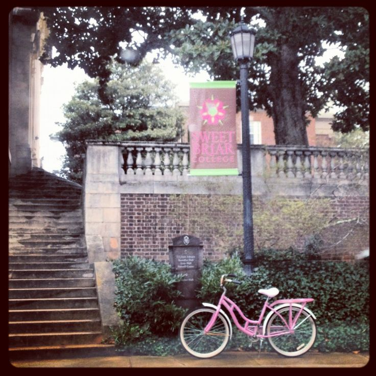 Dear and lovely Sweet Briar!