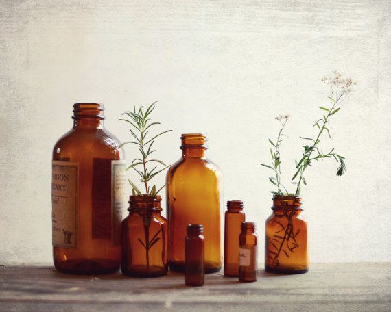 brown kitchen colors. Still life photography  vintage bottles brown sienna rustic kitchen wall art fine print Apothecary Vintage Bottle The 25 best Brown walls ideas on Pinterest Warm