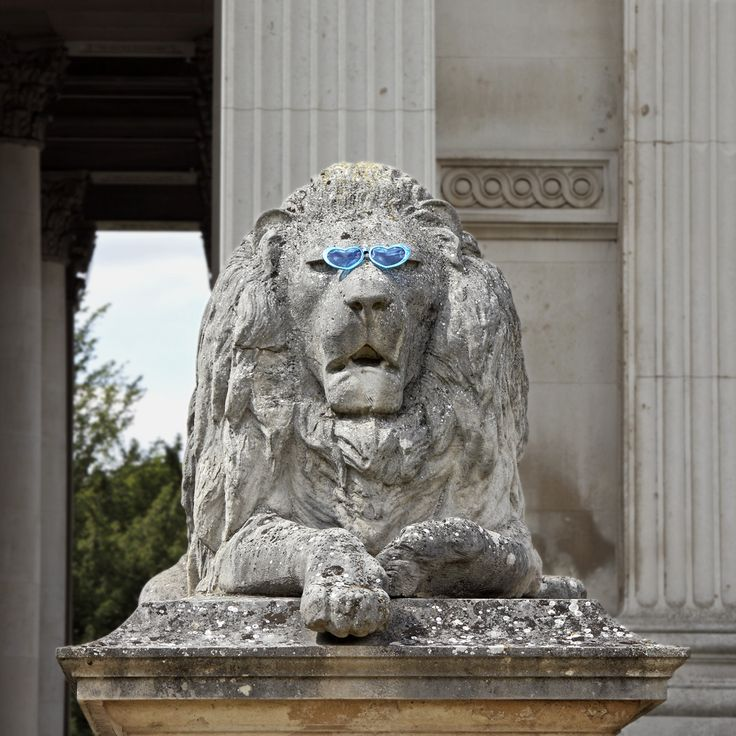 The coolest lion | Fitzwilliam Museum, University of Cambridge. Summer at the Museums
