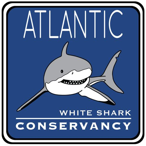 Sharktivity Map and App - the best source for up-to-date info. on great white…