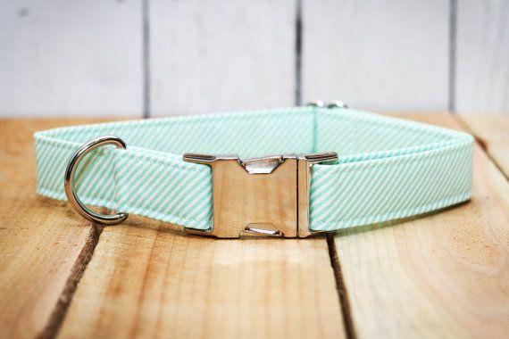 Mint Stripe Dog Collar, Turquoise & Light Blue Stripe, Robins Egg, Boy, Male, Female, Girl Dog Collar