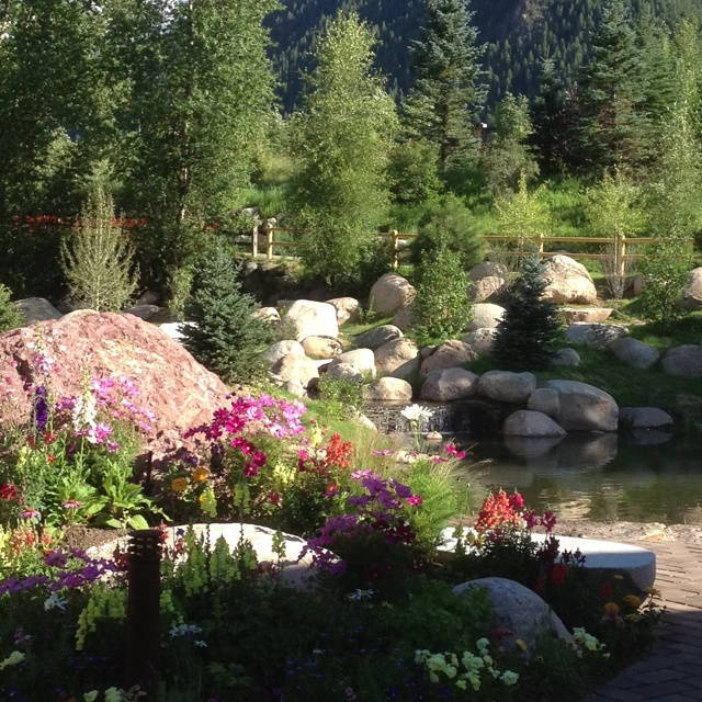 100+ Ideas To Try About Garden Beds And Plant Combos