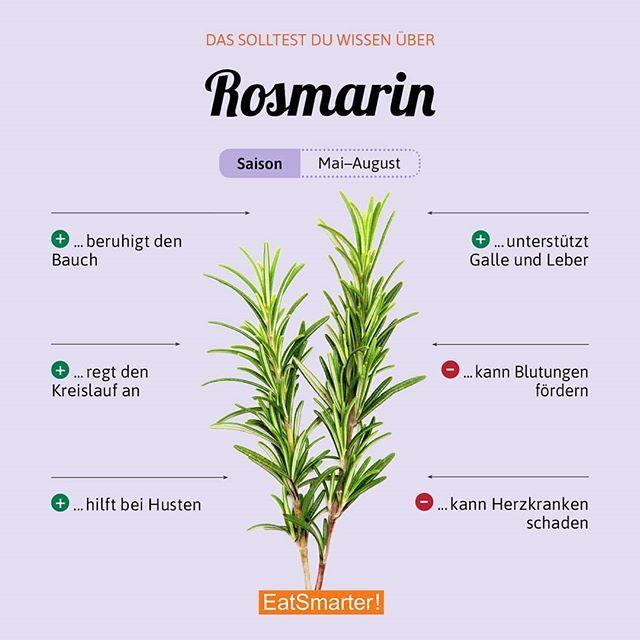 Eines der beliebtesten Kräuter. Wozu gibt es bei dir meistens Rosmarin? Klick d… – Tanja Guenther