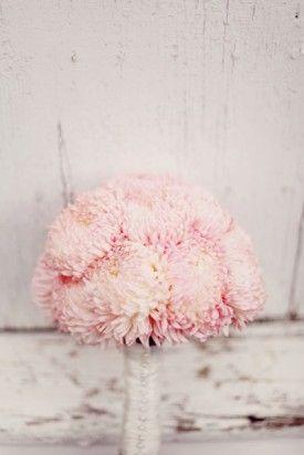 Beautiful Pink Dahlias   Tri-Coastal Design Inspiration