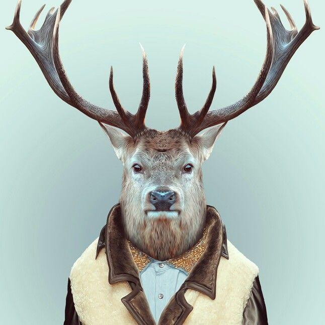 Deer #jacket #look #animal #as #human #design #deer