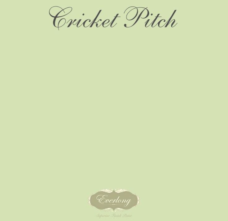 Everlong Superior Finish Paint • Cricket Pitch