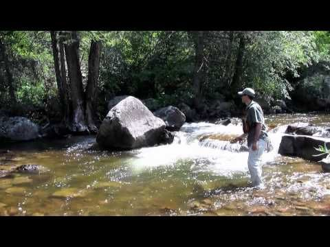 "interesting video, very fast water similar to cape streams ""How to Fly Fish Colorado's Freestone Streams"" ve"