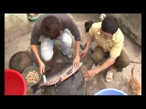 Món cá kho nổi tiếng một vùng quê Hà Nam - Việt Nam Hương vị cuộc sống