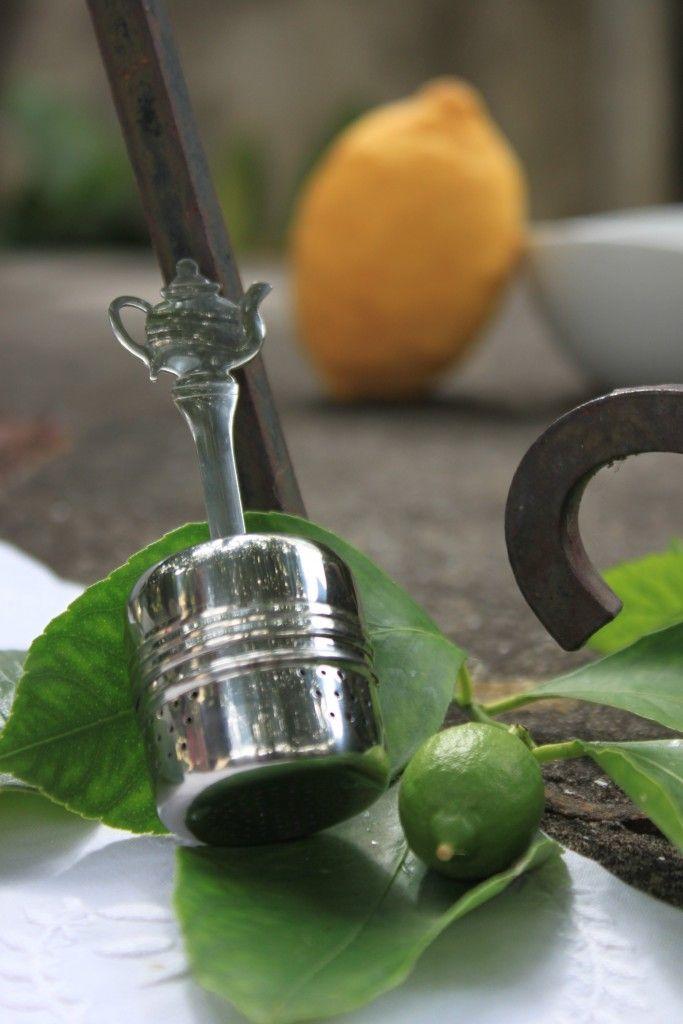 Infusor ❀ Bule - Muito atrativo, mergulha no seu chá e desponta na sua chávena com o seu pequeno bule. Inspired by Lemon