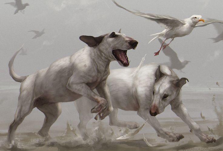 Картинки по запросу собака бежит рисунок