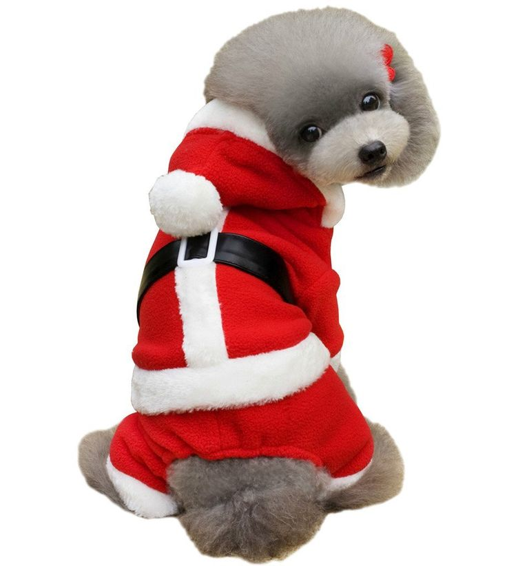 PetBoBo Pet Dog Cat Christmas Costumes Coat Santa Claus Suit for Small Medium Large Dogs Cat Christmas Boy Girl Hoodies Clothes -- Find out more about the great product at the image link. (This is an affiliate link and I receive a commission for the sales)
