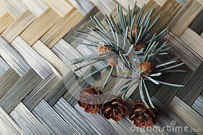 Fir branch and fir cones on a background of wicker