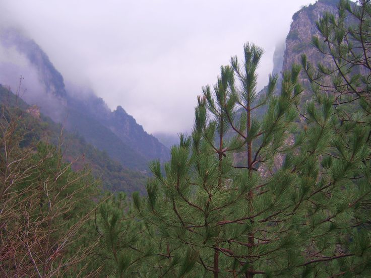 The mythical mountain. #Mount_Olympus, Pieria, #pass2greece
