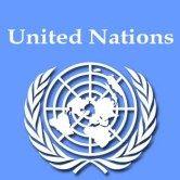 Birleşmiş Milletler Genç Profesyonel Programı