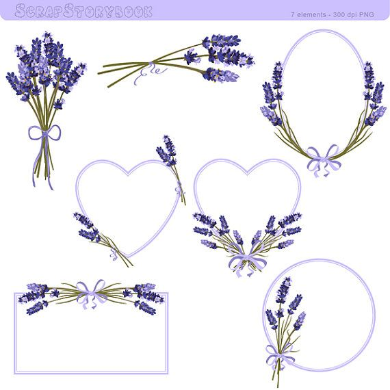 Lavender Flower Frame and Clipart 300 dpi PNG by Scrapstorybook, Ft1000.00