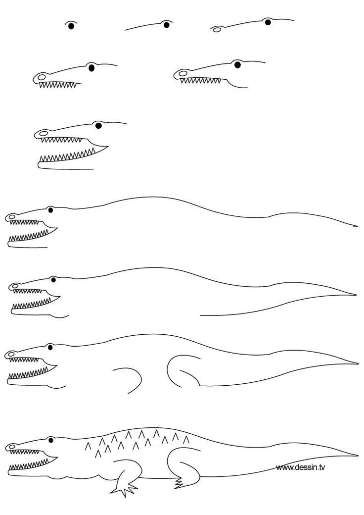 dessin crocodile