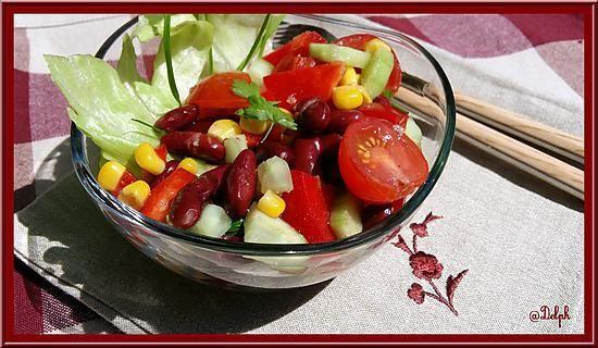 La meilleure recette de Salade Salsa Weight Watchers! L'essayer, c'est l'adopter! 5.0/5 (5 votes), 7 Commentaires. Ingrédients: 400g de haricots rouges cuits en conserve     1/2 concombre coupé en dés     300g de maïs en grains     250g de tomates cerises coupées en 4     4 tiges de ciboulette     1 poivron rouge épépiné et coupé en morceaux     persil frais  Vinaigrette      1 gousse d'ail écrasée     zeste et jus de 1 citron     1 c à c de Tabasco     3 c à s de vi...