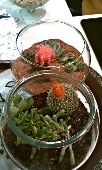 Great craft party idea: Terrariums!