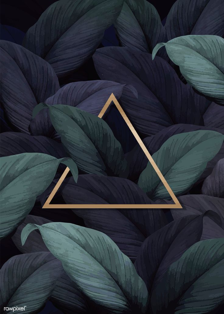 Gold triangle frame on tropical leaves background vector | premium image by rawp…