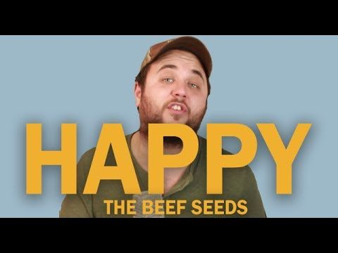 Pharrell Williams - Happy (OFFICIAL Beef Seeds Cover)