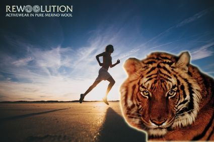 You can see, in this picture, the smartest and strongest predator of the world. It's able to make extraordinary challenges, it can run for hundreds of kilometers, swim, climb... Please, see a wonderful Tiger, beside...