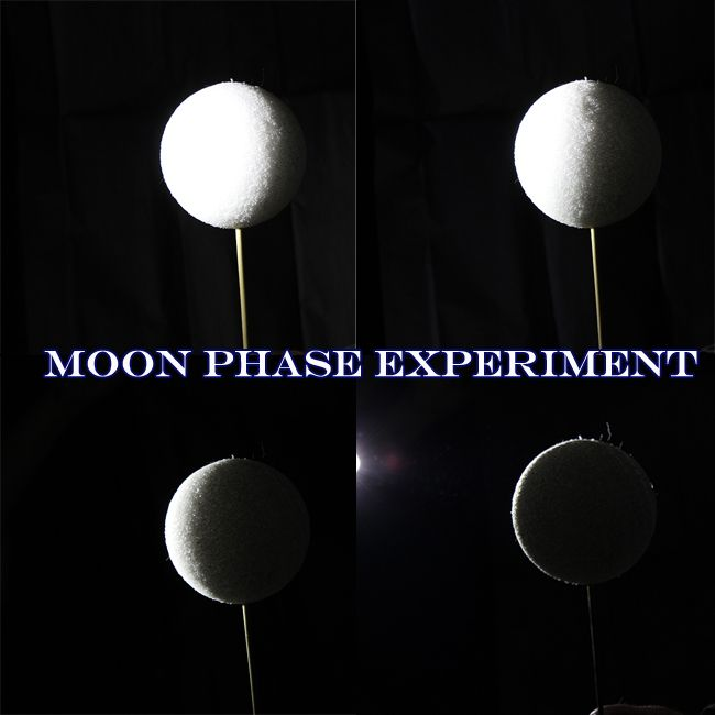 Teach the kids about the different Moon Phases with this fun Science Experiment!