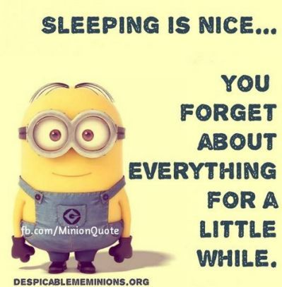 Sleeping Minion Quote Pictures,