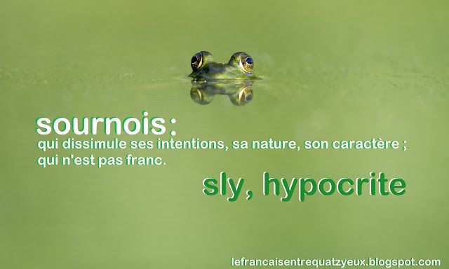 French vocabulary about personality. Sournois is used to describe a sly person, an hypocritical person.
