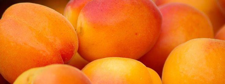 Meruňky úspěšně likvidují volné radikály - Energie života
