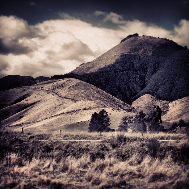 Rai Valley - Marlborough, New Zealand by conradknz, via Flickr