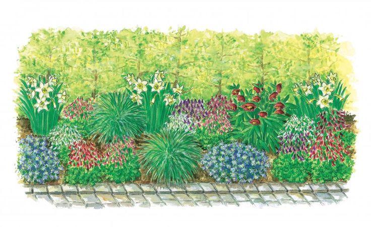Eine Sichtschutz-Hecke wirkt oft eintönig. Mit einer schönen Unterpflanzung kann sie jedoch zu einem Blickfang werden. Dieses Frühlingsbeet vor einer Buchenhecke können Sie ganz leicht nachpflanzen.