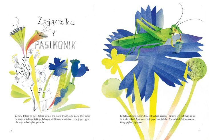 polska ilustracja dla dzieci: Nowość - Zajączka