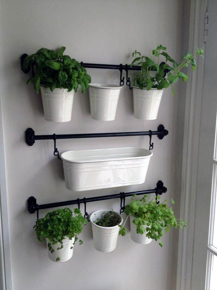 Remarkable Indoor Herb Gardens Herb Garden In Kitchen 640 x 480