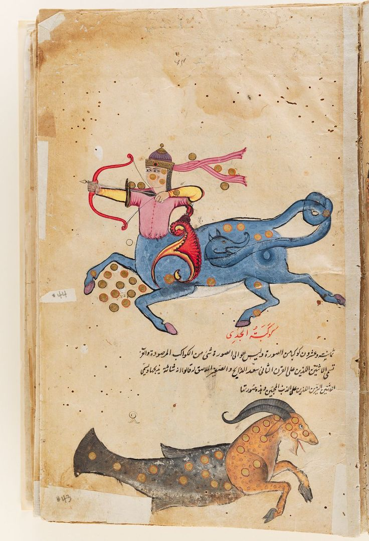 Manuscript of the 'Aja'ib al-makhluqat (Wonders of Creation) of Qazwini, with 253 paintings : manuscript, 17th century. Harvard Art Museum/Arthur M. Sackler Museum, Gift of Philip Hofer in memory of Eric Schroeder, 1972.3, Harvard University, Cambridge, Mass. Folio 33, recto (seq. 73)