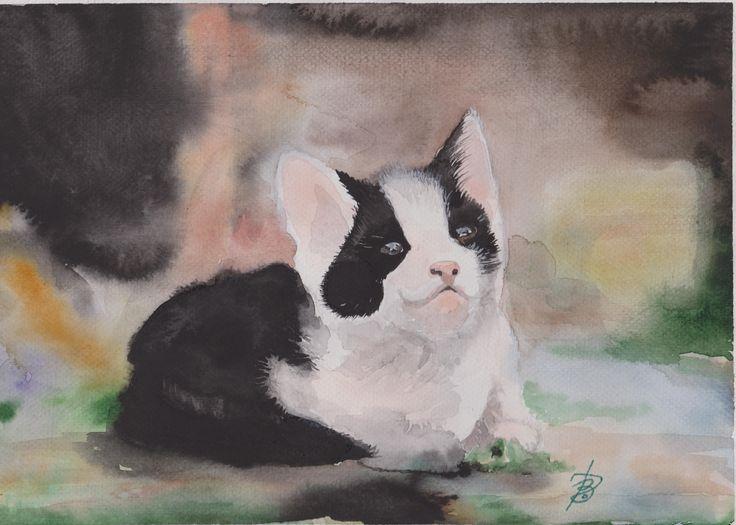 watercolor kitten