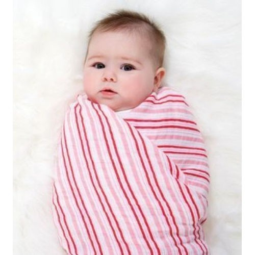 Delicious Aden & Anais swaddle blanket