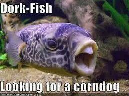 214 best comedy images on pinterest european robin for Bill engvall dork fish