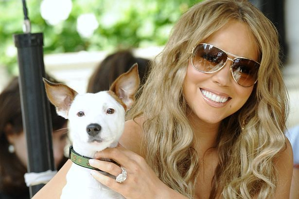 http://www.atvnetworks.com/ Mariah Carey and dog